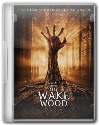 Capa do Filme Despertar dos Mortos